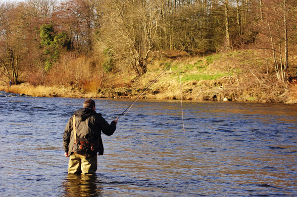 A Day on the River Wye for Grayling