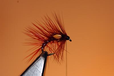 Snatcher Wet Fly