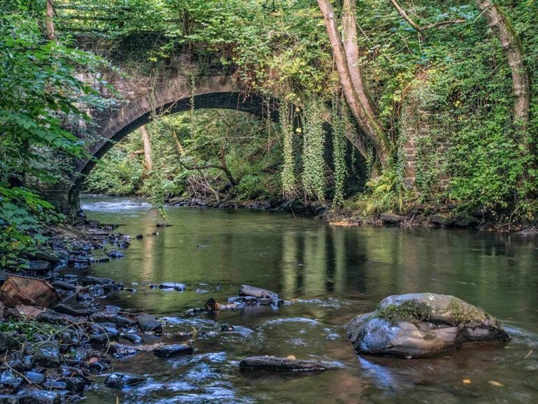 A Black River Story