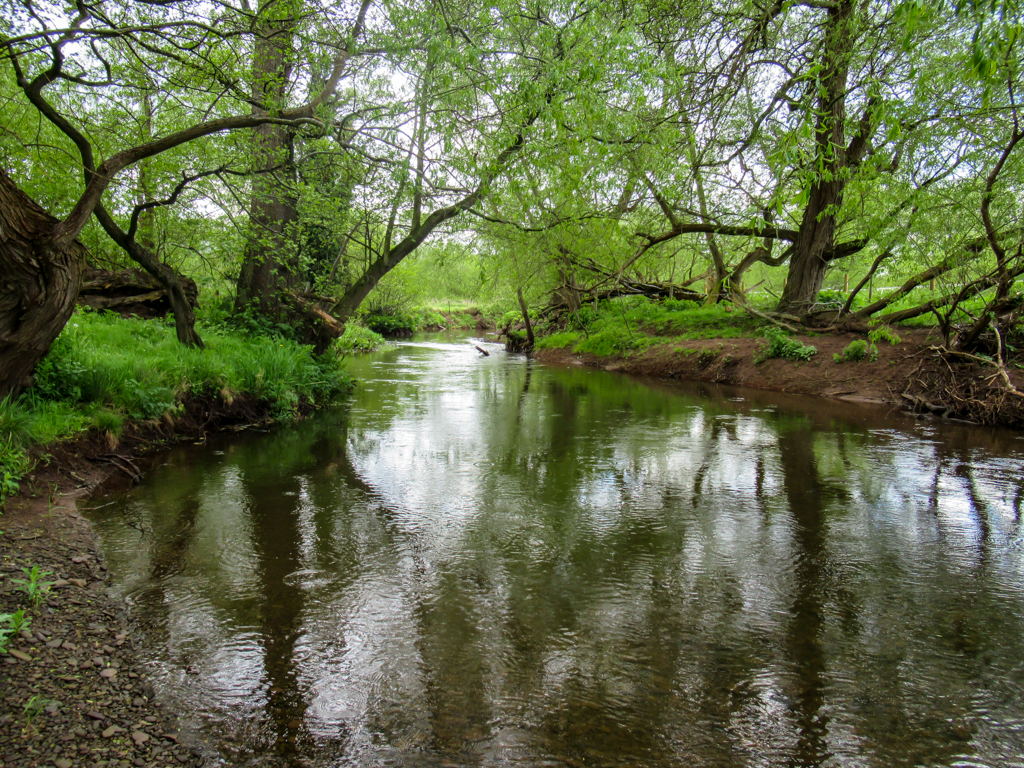 Gwent-Angling-Society-Our-Waters-Afon-Llynfi-02-1024