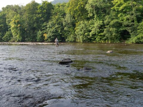 Fishing on the River Wye