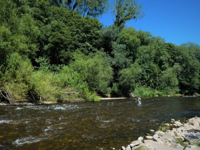 river usk fishing