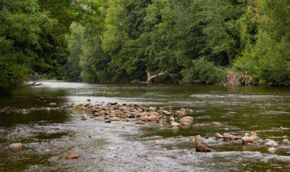 Fishing Resumes on All Beats