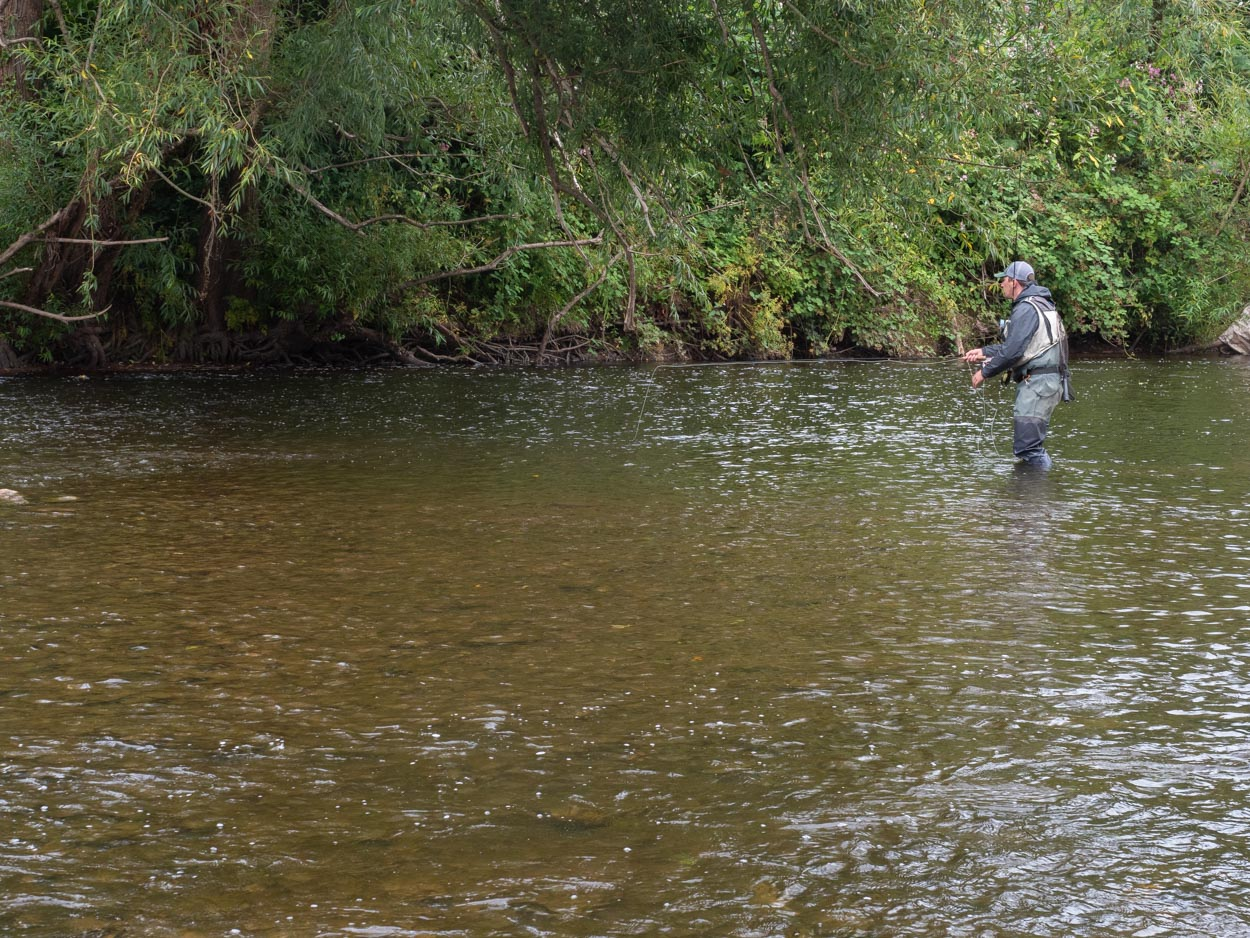 river usk trout