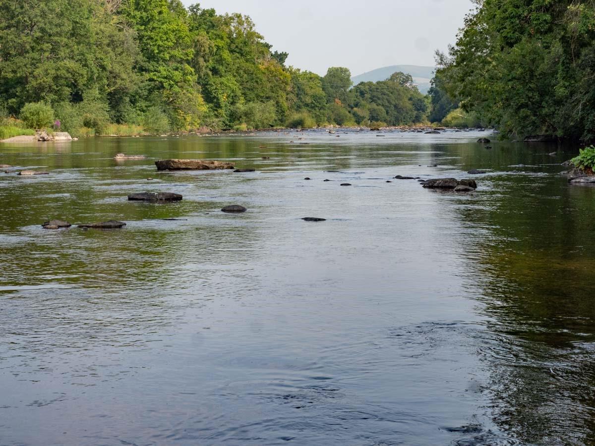 river wye fishing