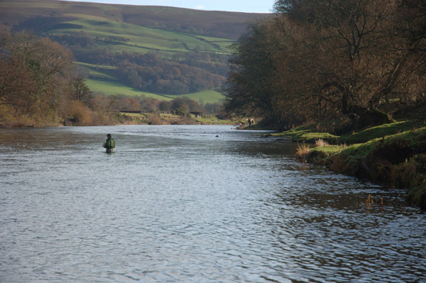A November Day on the River Wye