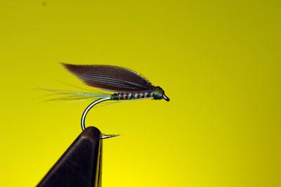 Dark Olive Wet Fly