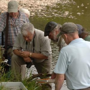 Fishing Skills – Entomology with Dai Roberts