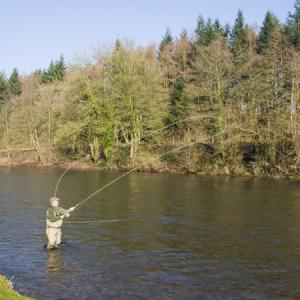 Jump Roll Leading to the Single Spey