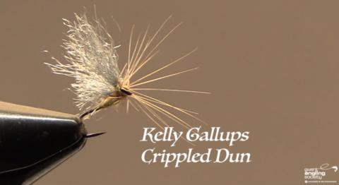 Kelly Galloup's, Crippled Dun