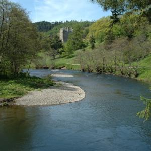 Return to the River Tweed