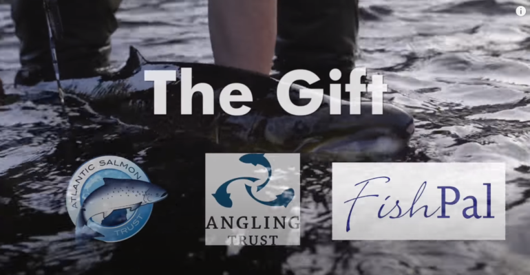 Atlantic Salmon Trust Video – The Gift – Part 3: Catch and Release