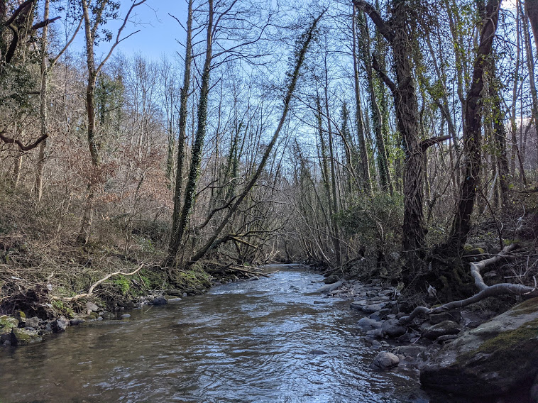 Gwent Angling Society - River Sirhowy