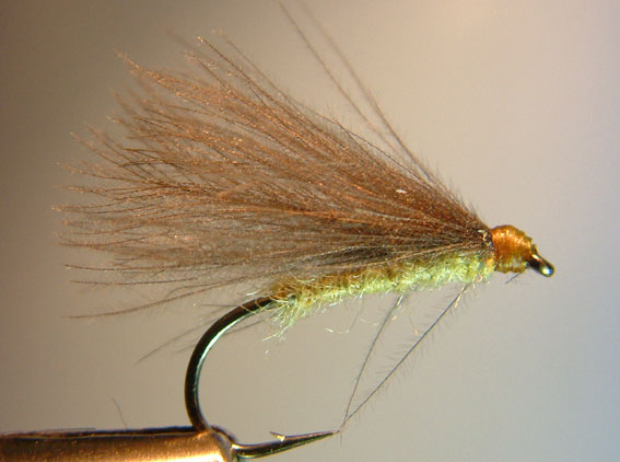 F Fly Selection